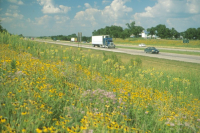Iowa's roadsides: beauty and environmental benefits run deep